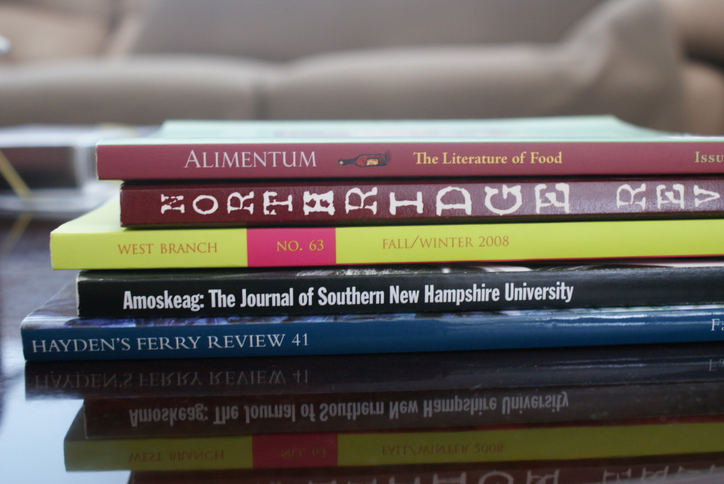 What To Do With a Failing Literary Journal? (Or What Should A Lit Mag Be?)